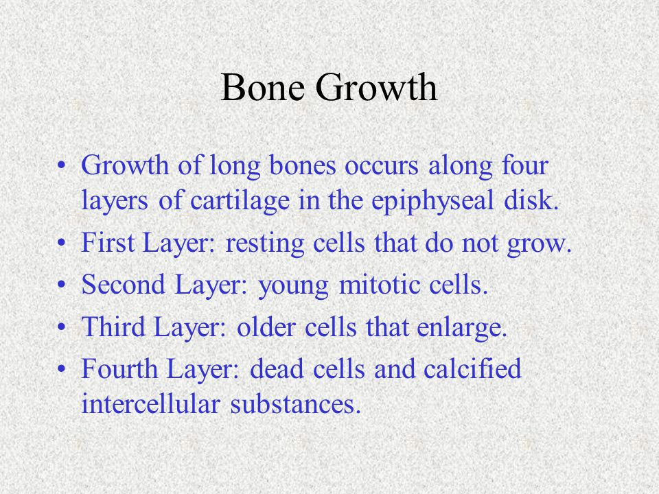Bone Growth Growth of long bones occurs along four layers of cartilage in the epiphyseal disk. First Layer: resting cells that do not grow. Second Lay