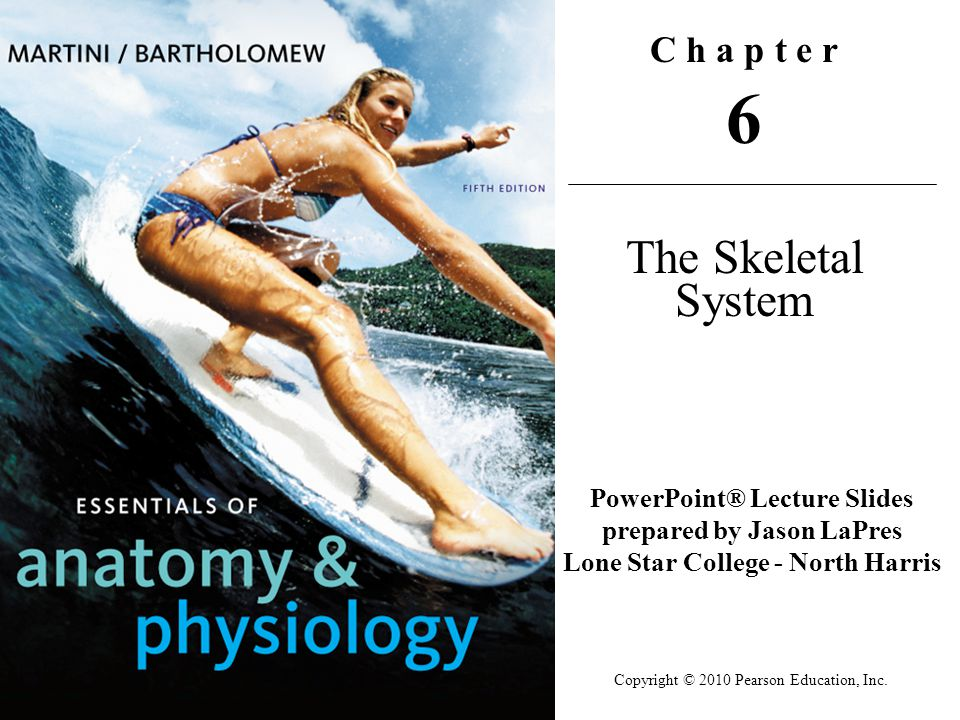 Copyright © 2010 Pearson Education, Inc. C h a p t e r 6 The Skeletal System PowerPoint® Lecture Slides prepared by Jason LaPres Lone Star College - N