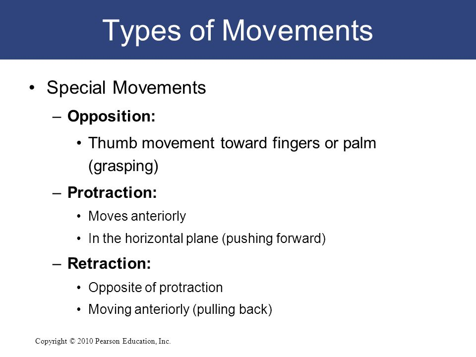 Copyright © 2010 Pearson Education, Inc. Types of Movements Special Movements –Opposition: Thumb movement toward fingers or palm (grasping) –Protracti