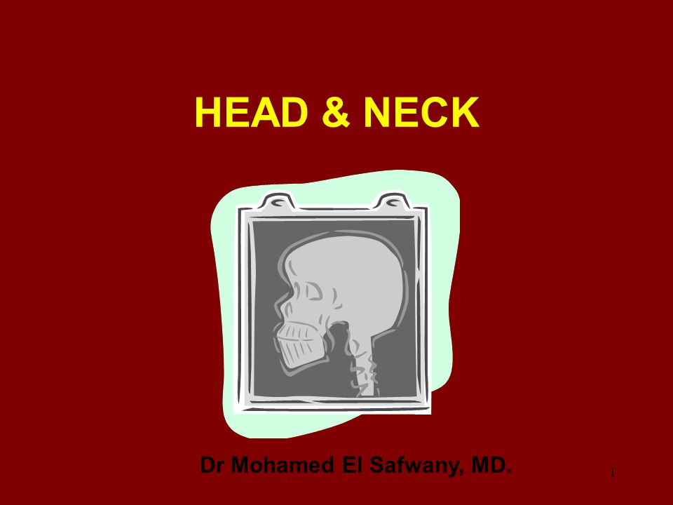 Intended learning outcome The student should learn at the end of this lecture CT of paranasal sinuses and neck.