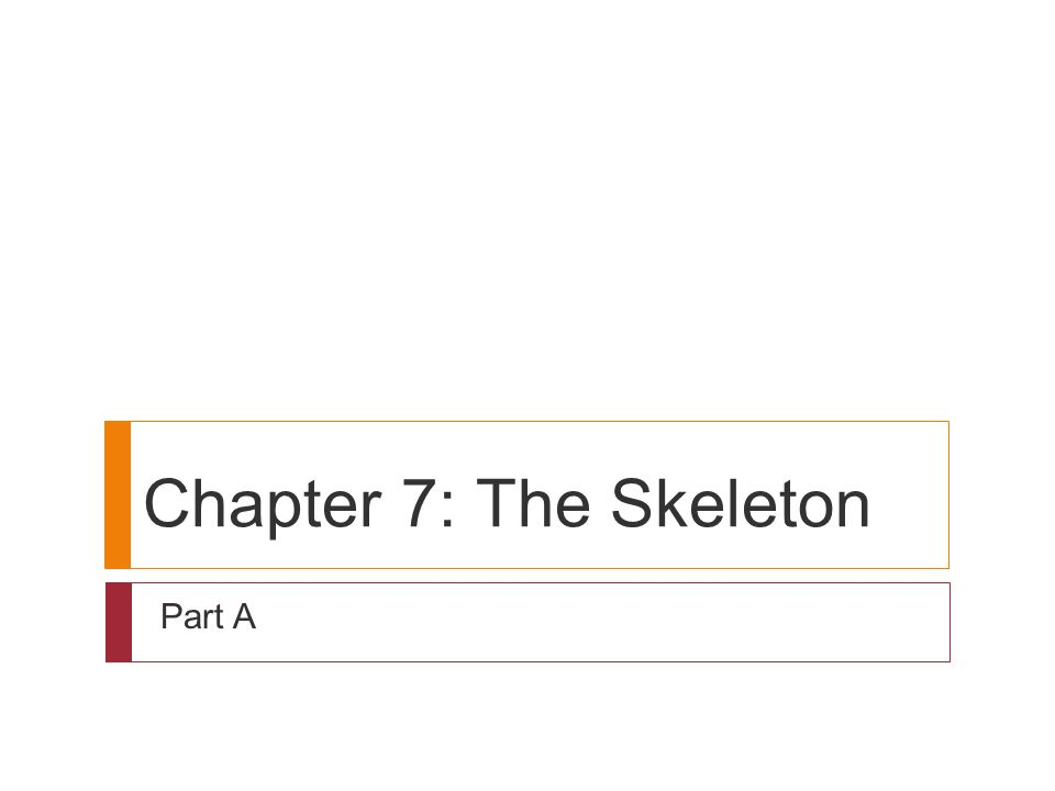 Chapter 7: The Skeleton Part A