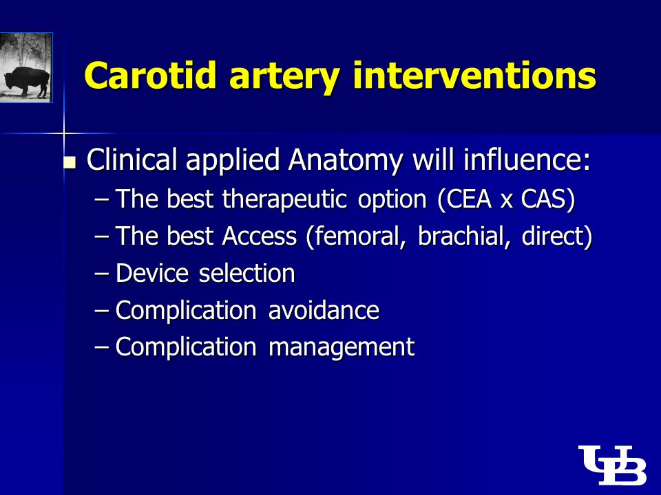 Carotid artery interventions Clinical applied Anatomy will influence: Clinical applied Anatomy will influence: –The best therapeutic option (CEA x CAS