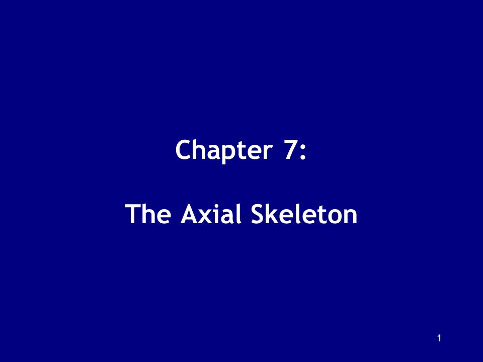 Chapter 7: The Axial Skeleton 1