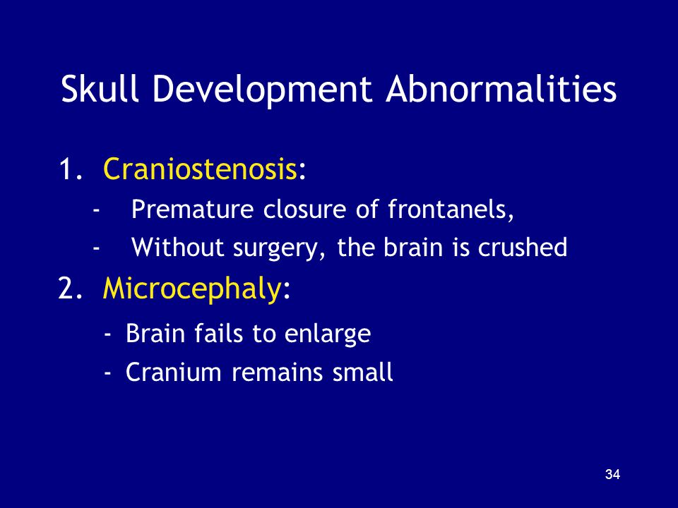Skull Development Abnormalities 1.Craniostenosis: -Premature closure of frontanels, -Without surgery, the brain is crushed 2.Microcephaly: - Brain fai