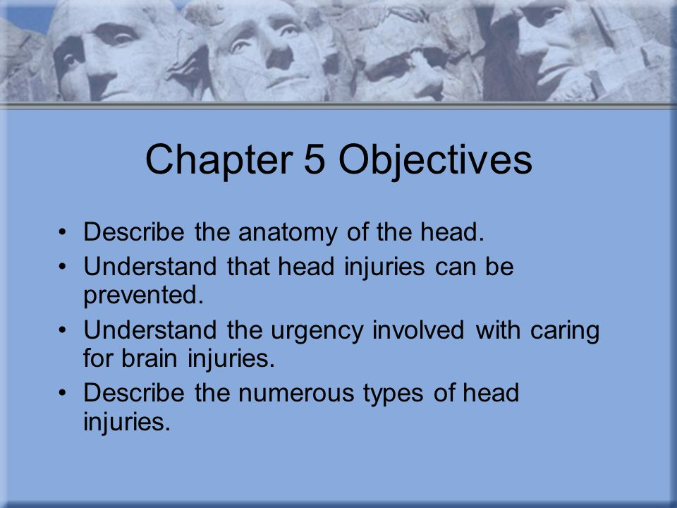 Chapter 5 Objectives Describe the anatomy of the head.