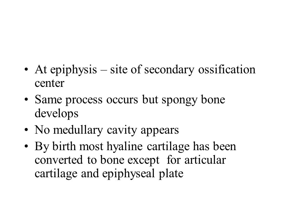 At epiphysis – site of secondary ossification center Same process occurs but spongy bone develops No medullary cavity appears By birth most hyaline cartilage has been converted to bone except for articular cartilage and epiphyseal plate