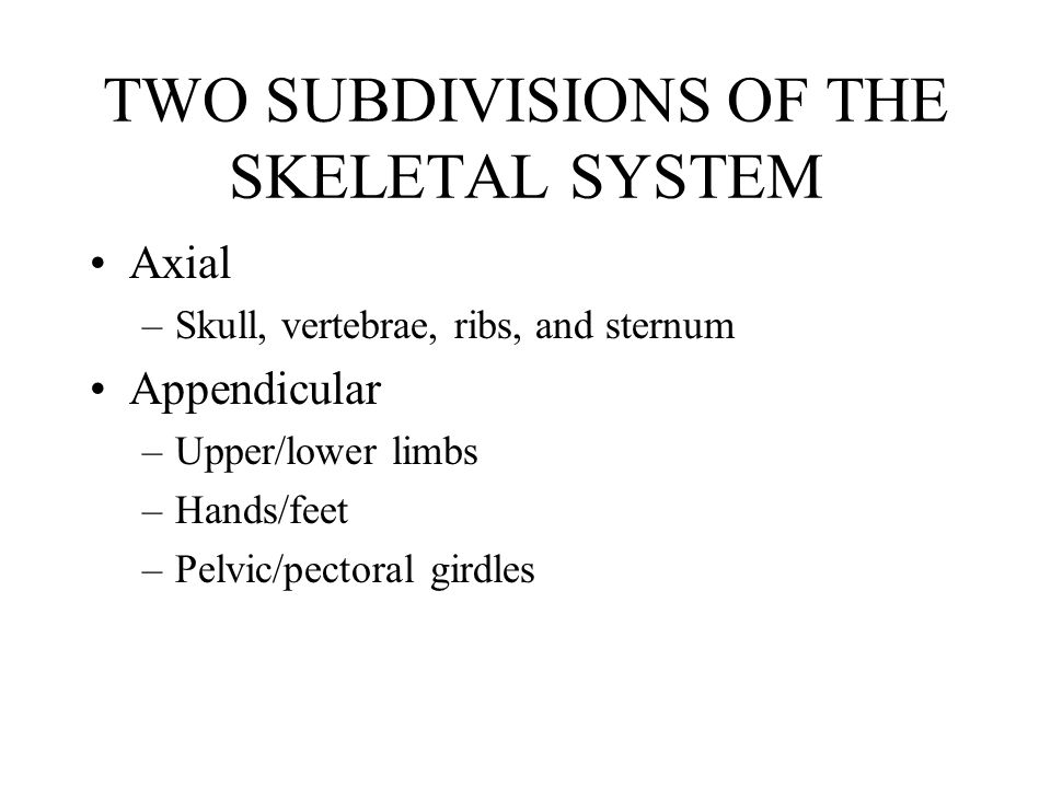 TWO SUBDIVISIONS OF THE SKELETAL SYSTEM Axial –Skull, vertebrae, ribs, and sternum Appendicular –Upper/lower limbs –Hands/feet –Pelvic/pectoral girdles