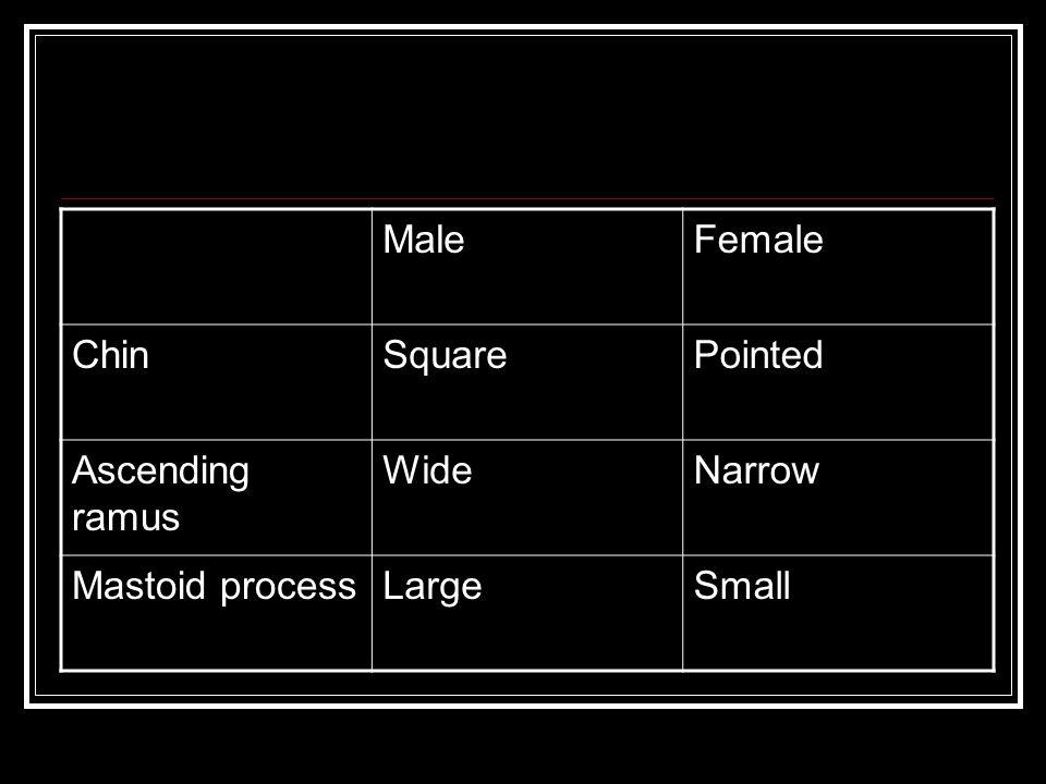 MaleFemale ChinSquarePointed Ascending ramus WideNarrow Mastoid processLargeSmall