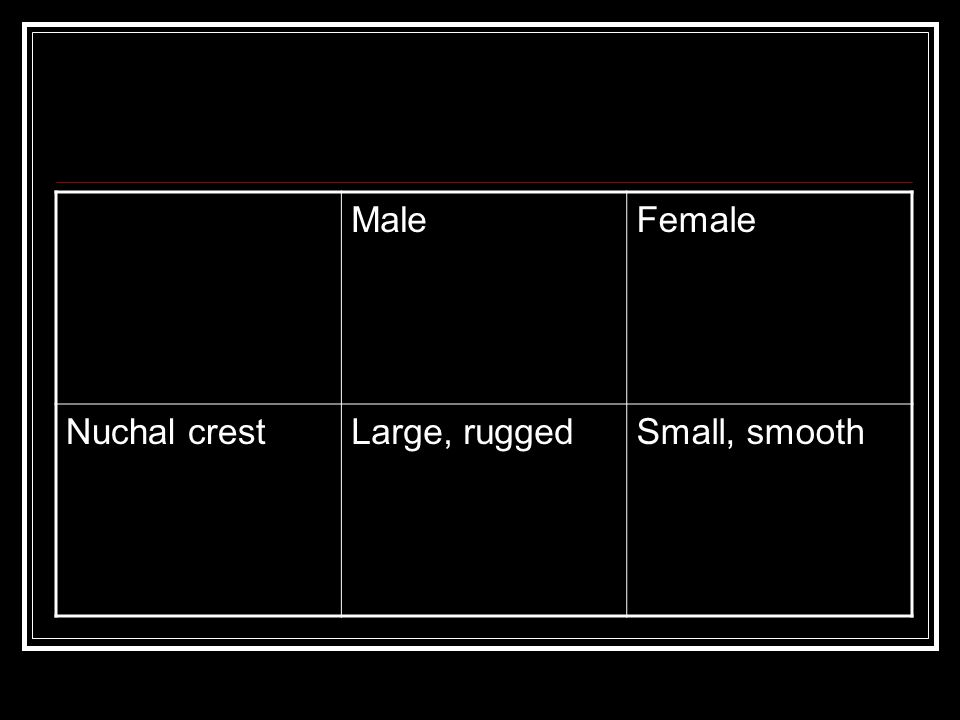 MaleFemale Nuchal crestLarge, ruggedSmall, smooth