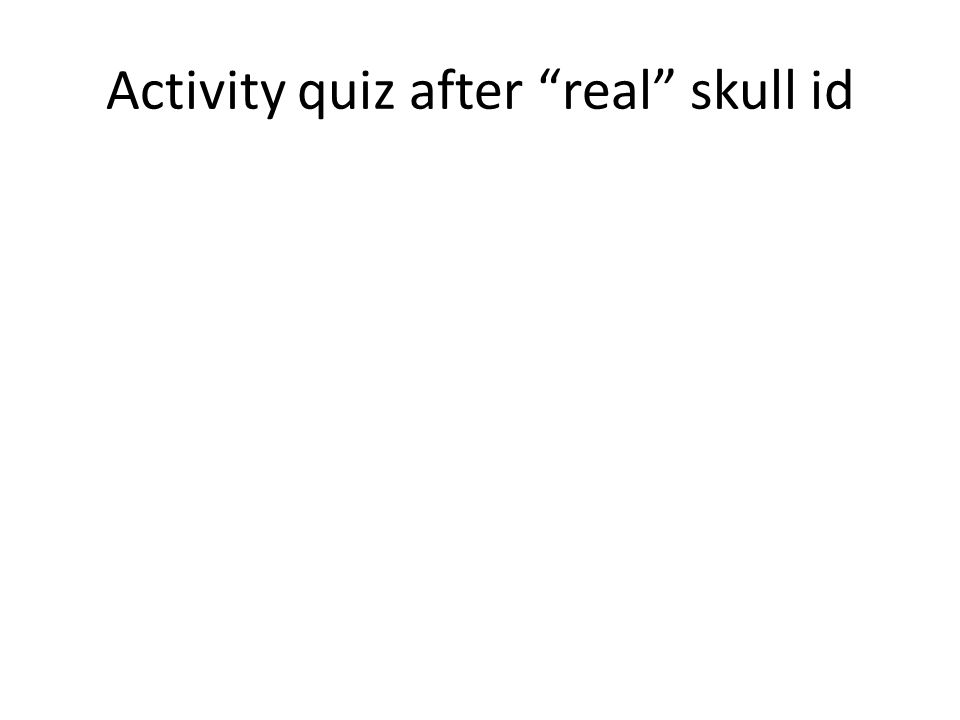 Activity quiz after real skull id