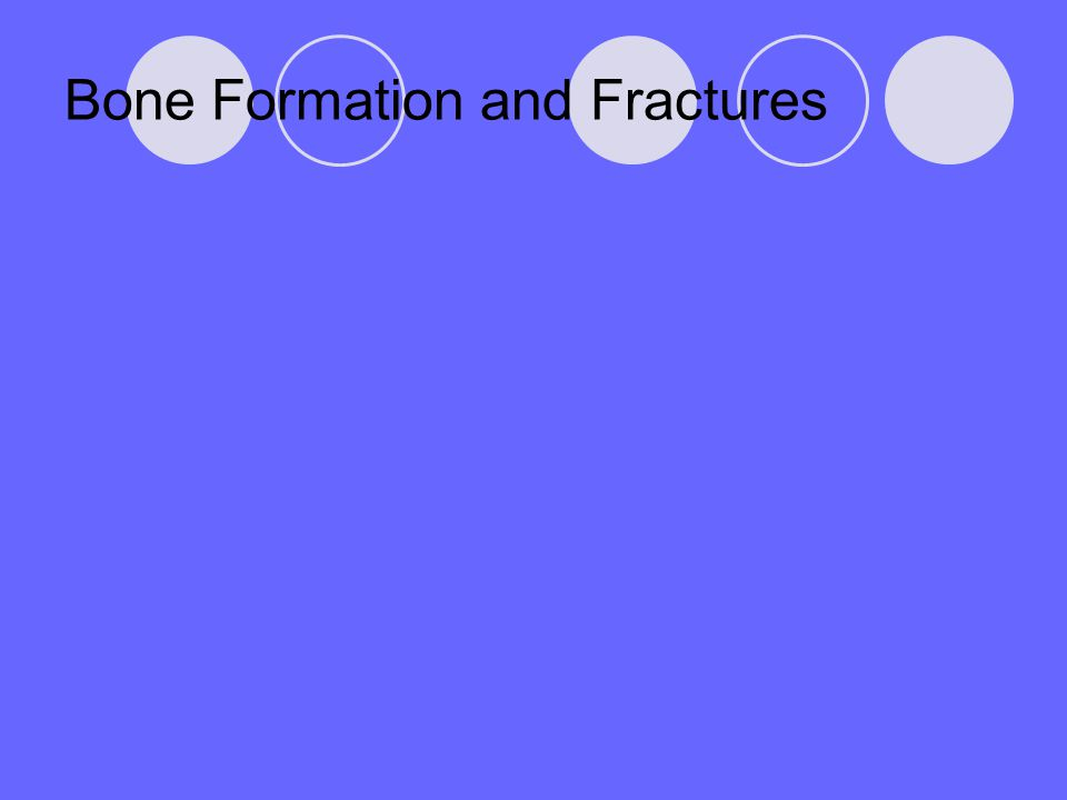 Bone Formation and Fractures