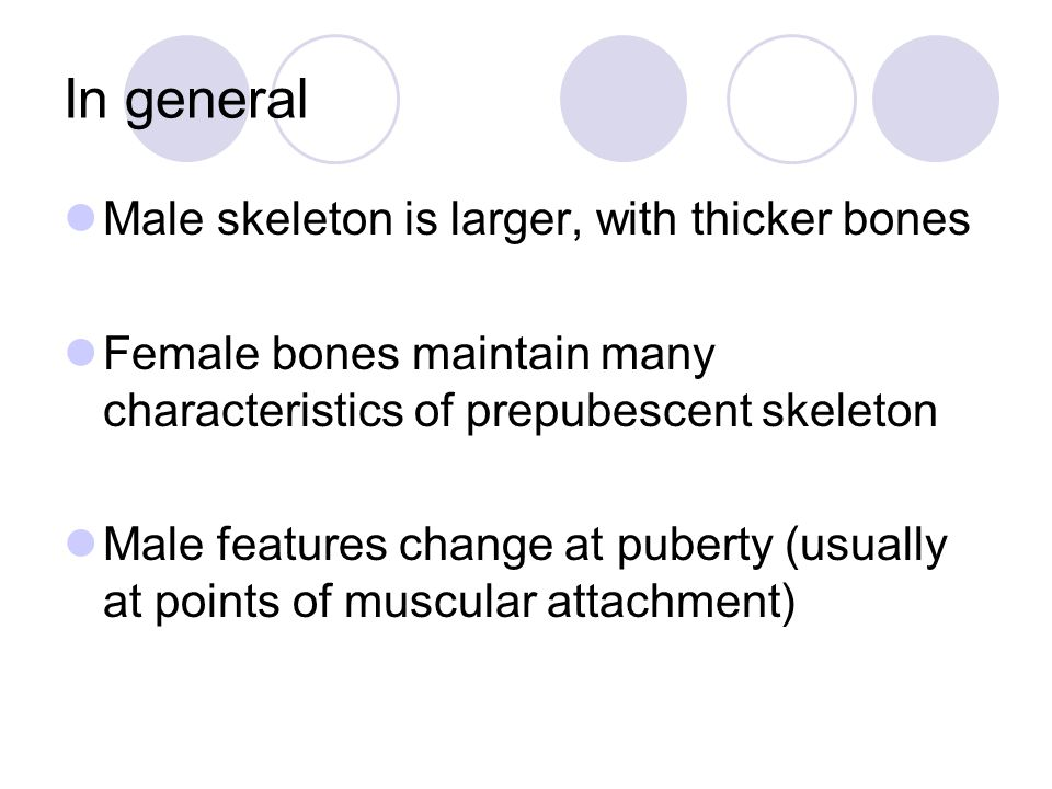 In general Male skeleton is larger, with thicker bones Female bones maintain many characteristics of prepubescent skeleton Male features change at pub