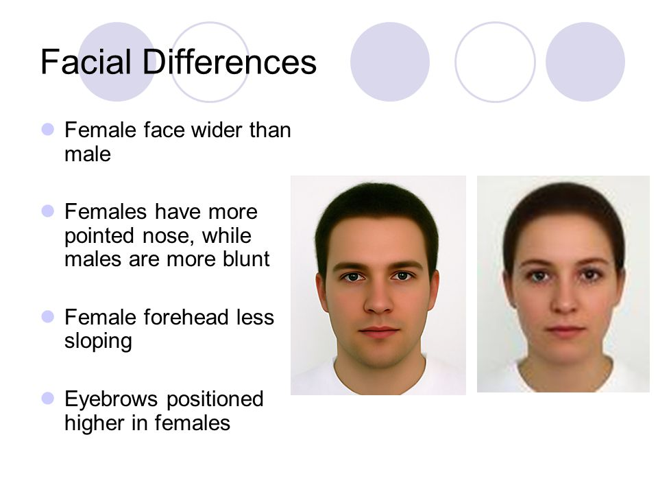 Facial Differences Female face wider than male Females have more pointed nose, while males are more blunt Female forehead less sloping Eyebrows positi