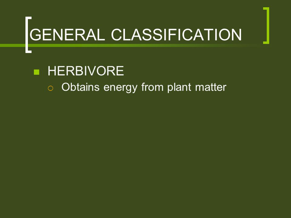 GENERAL CLASSIFICATION HERBIVORE  Obtains energy from plant matter