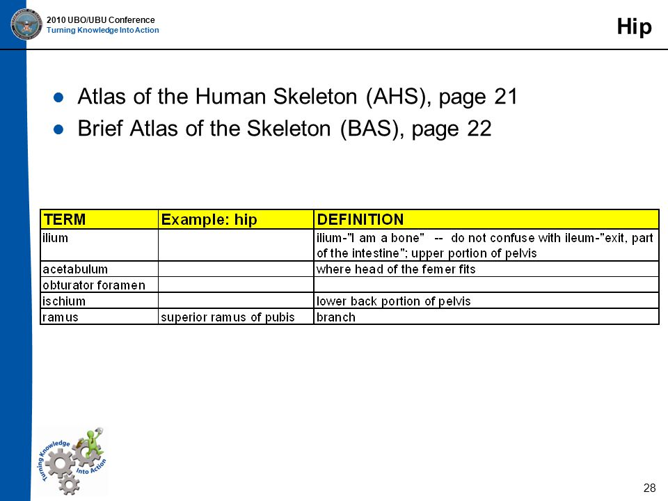 2010 UBO/UBU Conference Turning Knowledge Into Action Hip Atlas of the Human Skeleton (AHS), page 21 Brief Atlas of the Skeleton (BAS), page 22 28