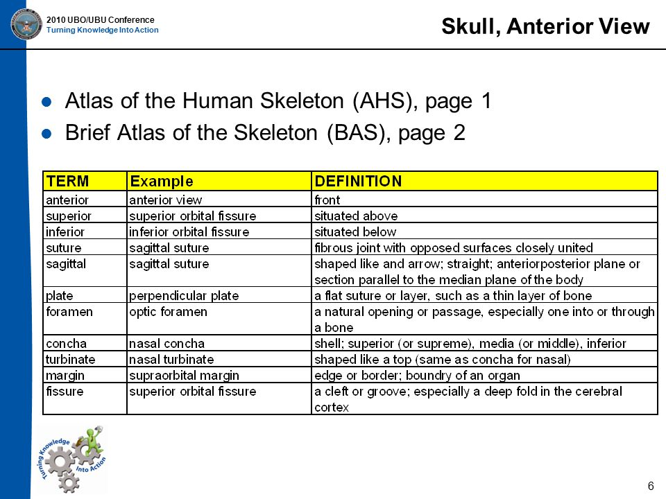2010 UBO/UBU Conference Turning Knowledge Into Action Skull, Anterior View Atlas of the Human Skeleton (AHS), page 1 Brief Atlas of the Skeleton (BAS), page 2 6