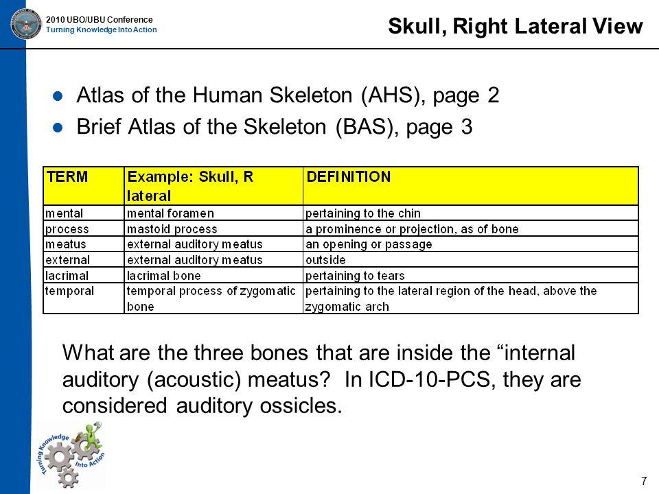 2010 UBO/UBU Conference Turning Knowledge Into Action Vertebral Column Atlas of the Human Skeleton (AHS), page 11 Brief Atlas of the Skeleton (BAS), page 13 18
