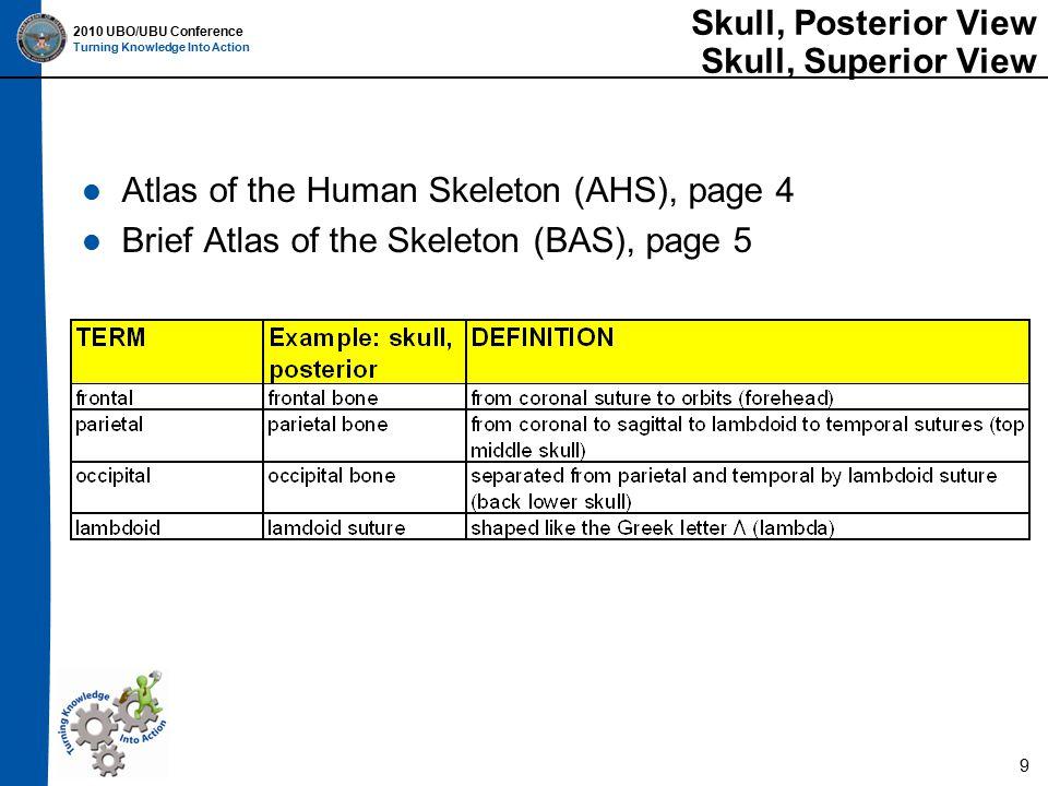 2010 UBO/UBU Conference Turning Knowledge Into Action Lumbar Vertebrae Atlas of the Human Skeleton (AHS), page 13 Brief Atlas of the Skeleton (BAS), page 15 20