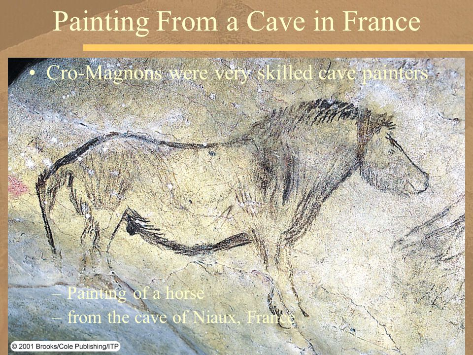 Cro-Magnons were very skilled cave painters –Painting of a horse –from the cave of Niaux, France Painting From a Cave in France