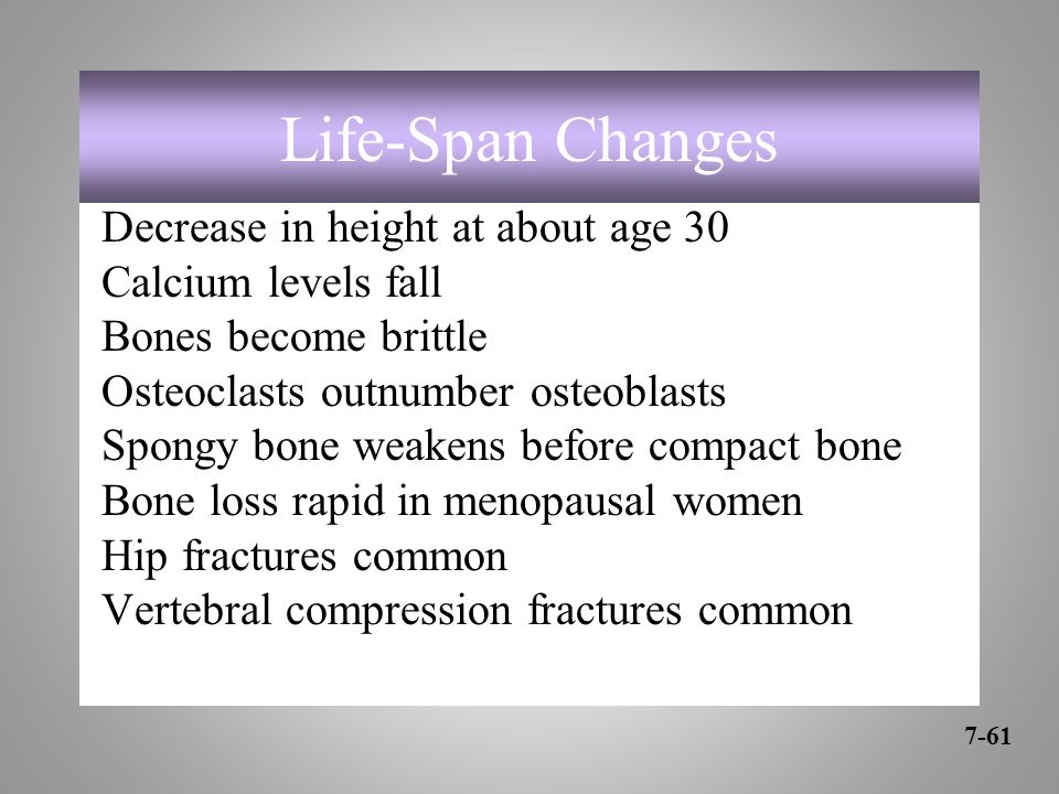 Life-Span Changes Decrease in height at about age 30 Calcium levels fall Bones become brittle Osteoclasts outnumber osteoblasts Spongy bone weakens before compact bone Bone loss rapid in menopausal women Hip fractures common Vertebral compression fractures common 7-61