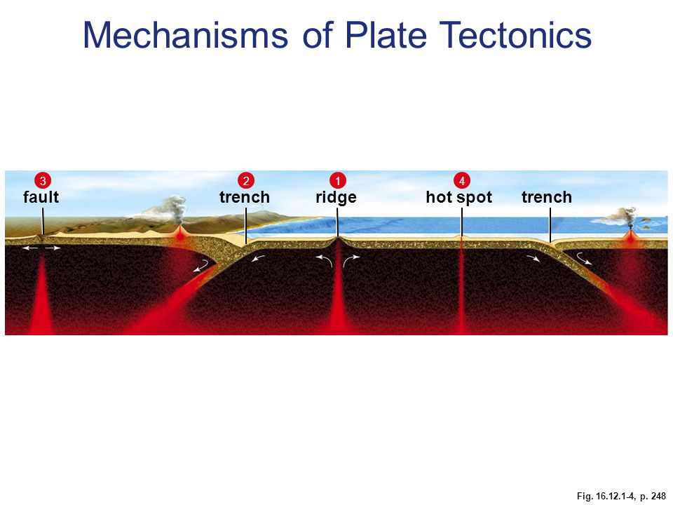 Fig. 16.12.1-4, p. 248 faulthot spottrench ridge 1234 Mechanisms of Plate Tectonics