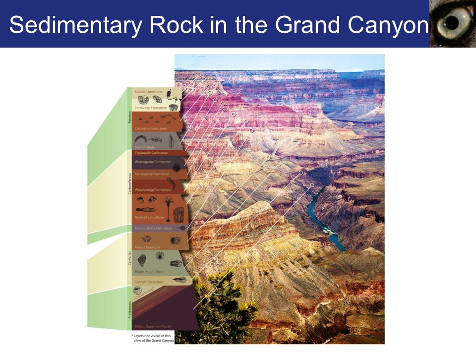 Sedimentary Rock in the Grand Canyon