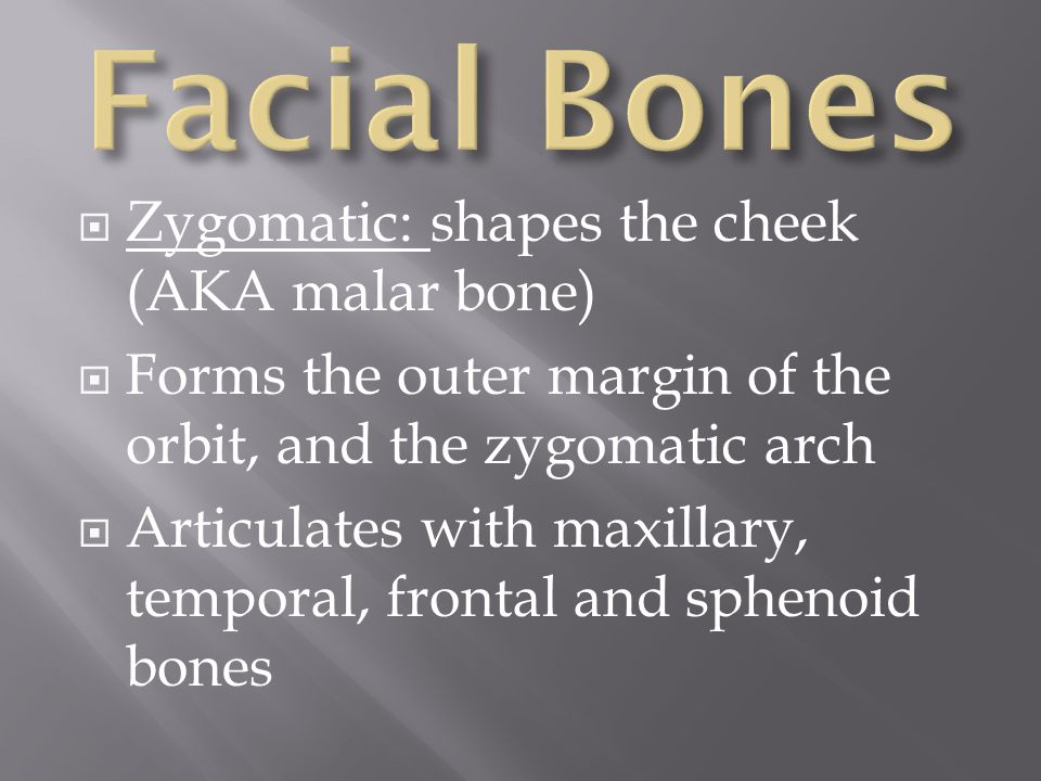  Zygomatic: shapes the cheek (AKA malar bone)  Forms the outer margin of the orbit, and the zygomatic arch  Articulates with maxillary, temporal, f
