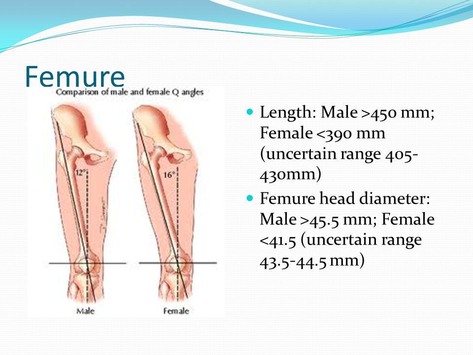 Femure Length: Male >450 mm; Female <390 mm (uncertain range 405- 430mm) Femure head diameter: Male >45.5 mm; Female <41.5 (uncertain range 43.5-44.5
