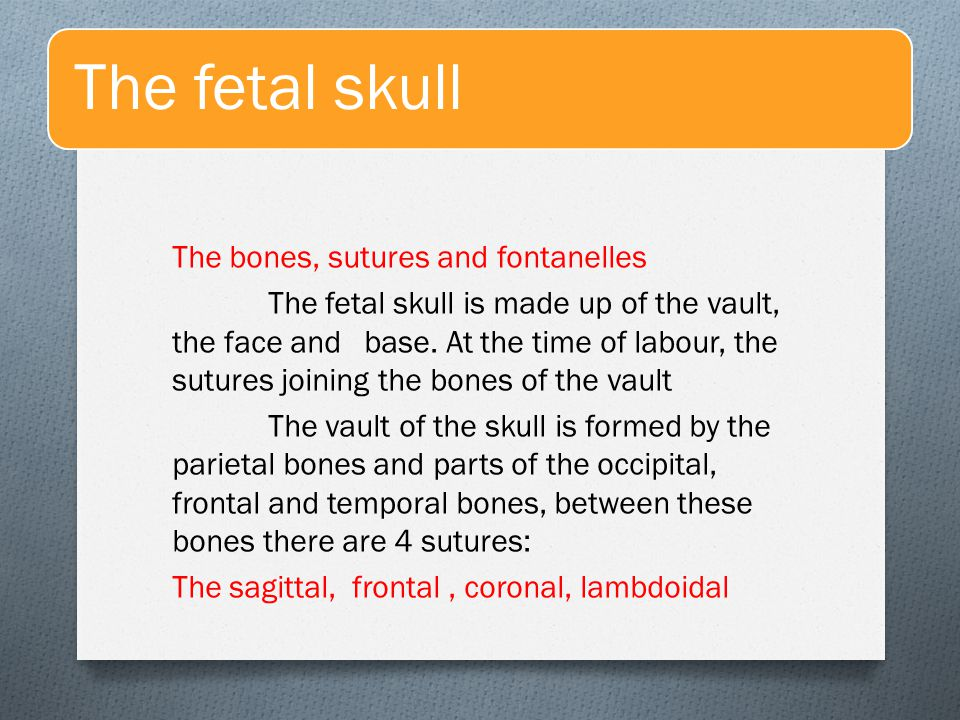 The fetal skull The fontanelles are the junctions of the various sutures.