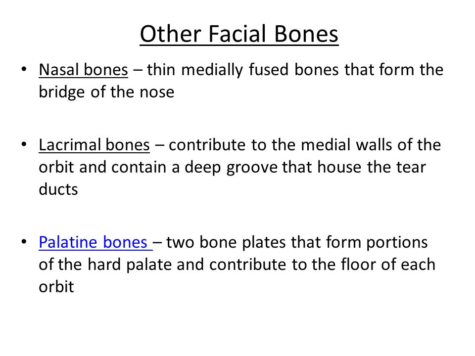 Zygomatic Bones Irregularly shaped bones (cheekbones) that form the prominences of the cheeks and the inferolateral margins of the orbits