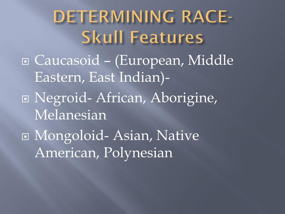  Caucasoid – (European, Middle Eastern, East Indian)-  Negroid- African, Aborigine, Melanesian  Mongoloid- Asian, Native American, Polynesian