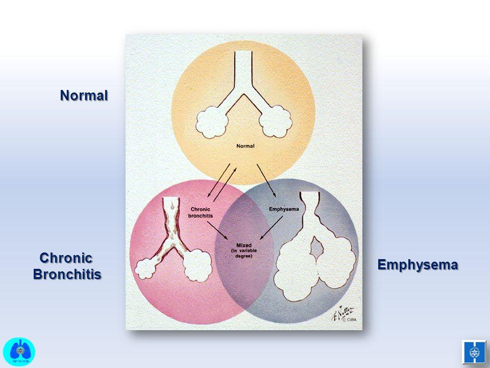 Normal ChronicBronchitis Emphysema