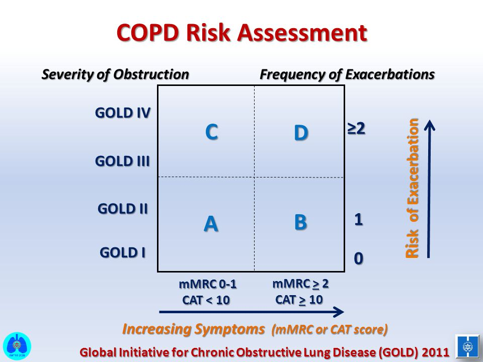 Ri sk of Exacerbation ≥2 1 0 Frequency of Exacerbations COPD Risk Assessment CD A B Increasing Symptoms (mMRC or CAT score) mMRC 0-1 CAT < 10 mMRC > 2