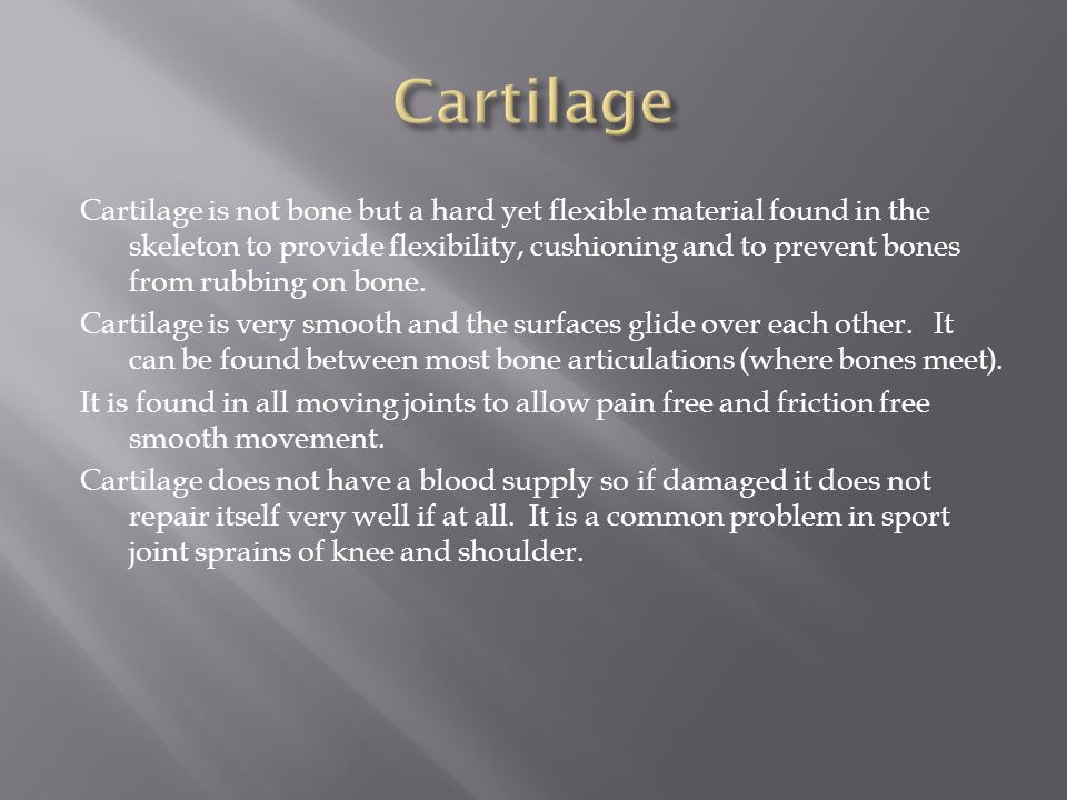 Cartilage is not bone but a hard yet flexible material found in the skeleton to provide flexibility, cushioning and to prevent bones from rubbing on b