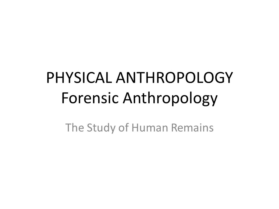 PHYSICAL ANTHROPOLOGY Forensic Anthropology The Study of Human Remains