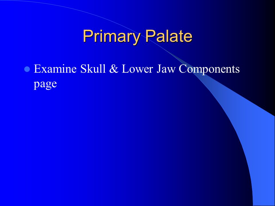 Primary Palate Examine Skull & Lower Jaw Components page