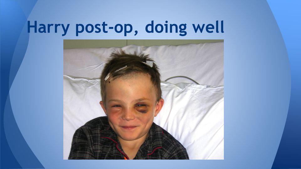 Harry post-op, doing well
