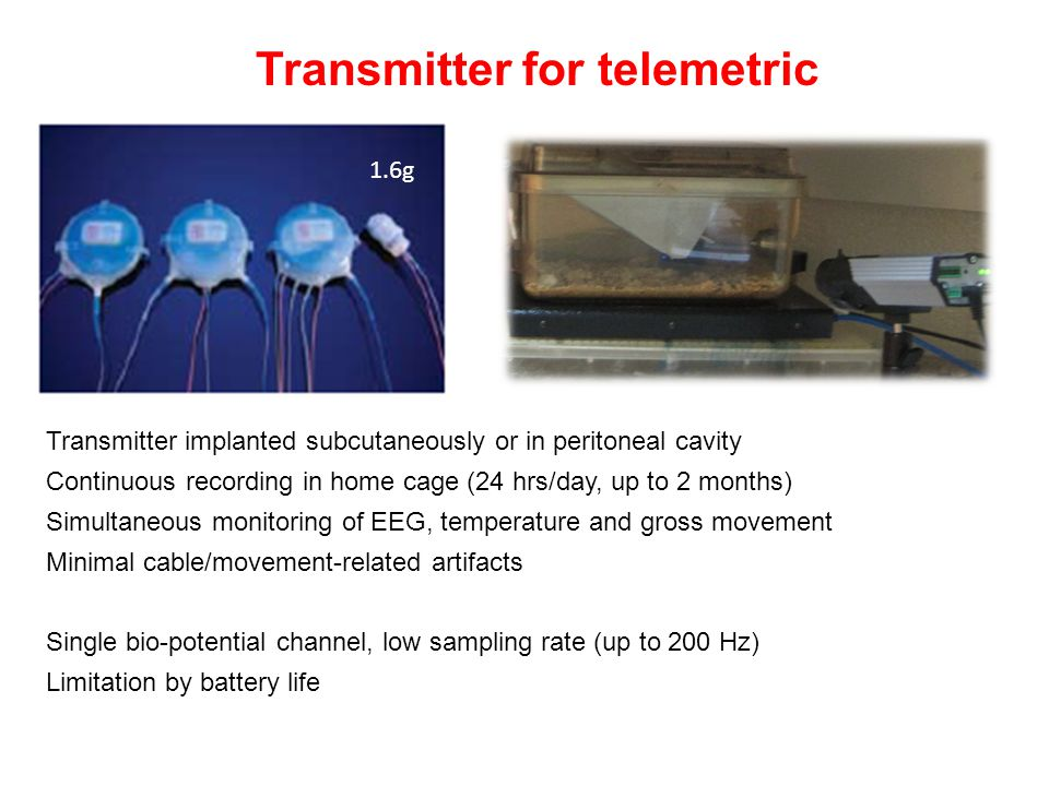 Transmitter for telemetric Transmitter implanted subcutaneously or in peritoneal cavity Continuous recording in home cage (24 hrs/day, up to 2 months)