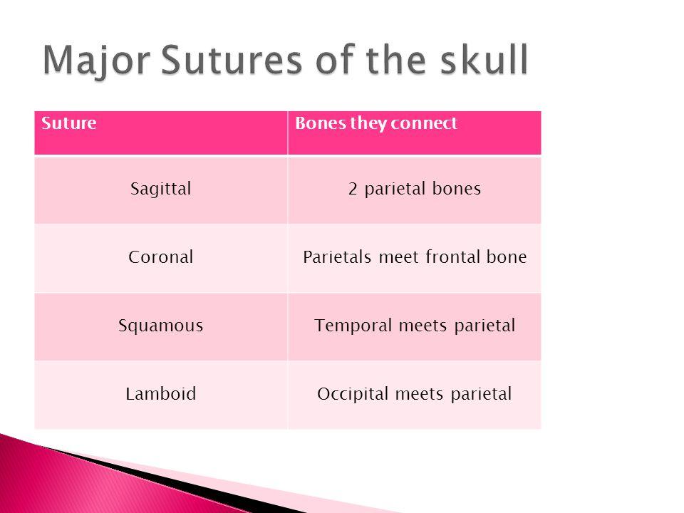 1.Frontal 2. Sphenoid 3. Ethmoid 4. Right Parietal 5.