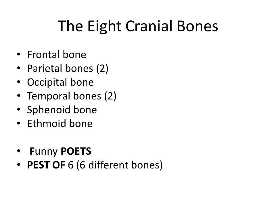 The Eight Cranial Bones Frontal bone Parietal bones (2) Occipital bone Temporal bones (2) Sphenoid bone Ethmoid bone Funny POETS PEST OF 6 (6 differen