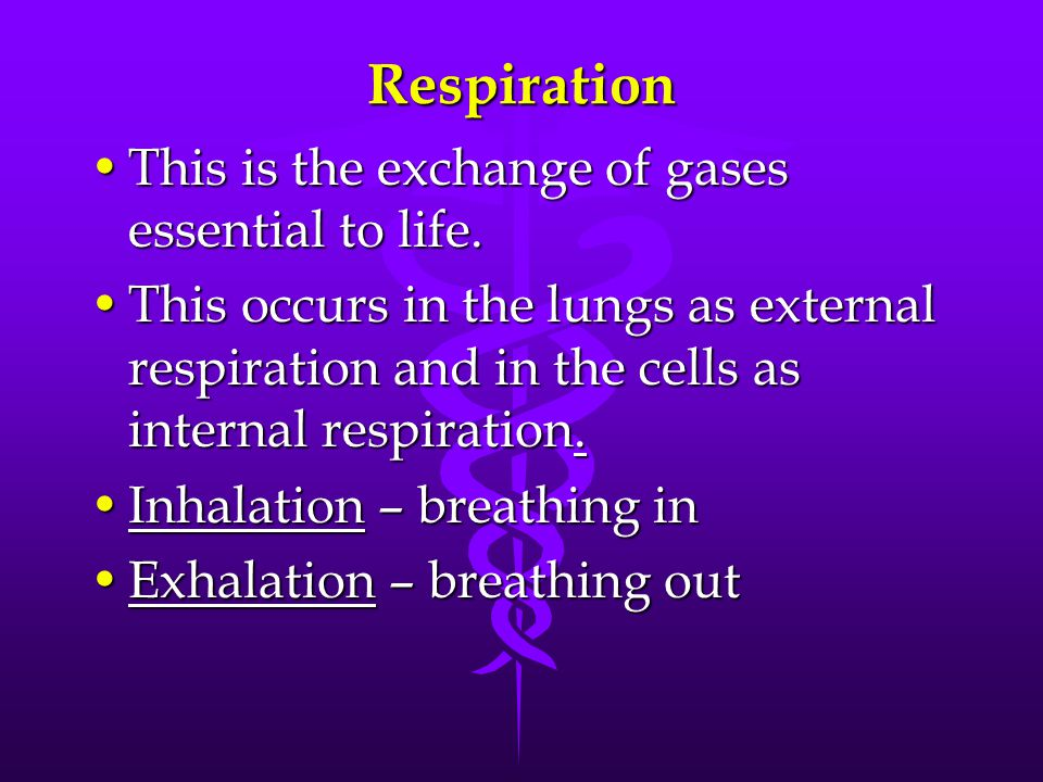 Respiration This is the exchange of gases essential to life.This is the exchange of gases essential to life. This occurs in the lungs as external resp