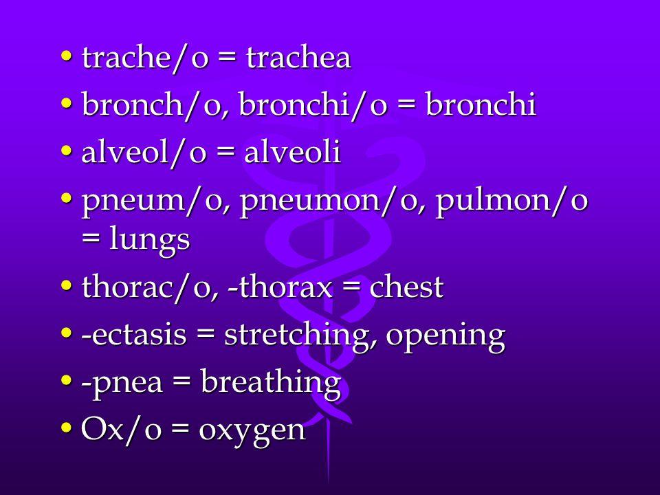 trache/o = tracheatrache/o = trachea bronch/o, bronchi/o = bronchibronch/o, bronchi/o = bronchi alveol/o = alveolialveol/o = alveoli pneum/o, pneumon/