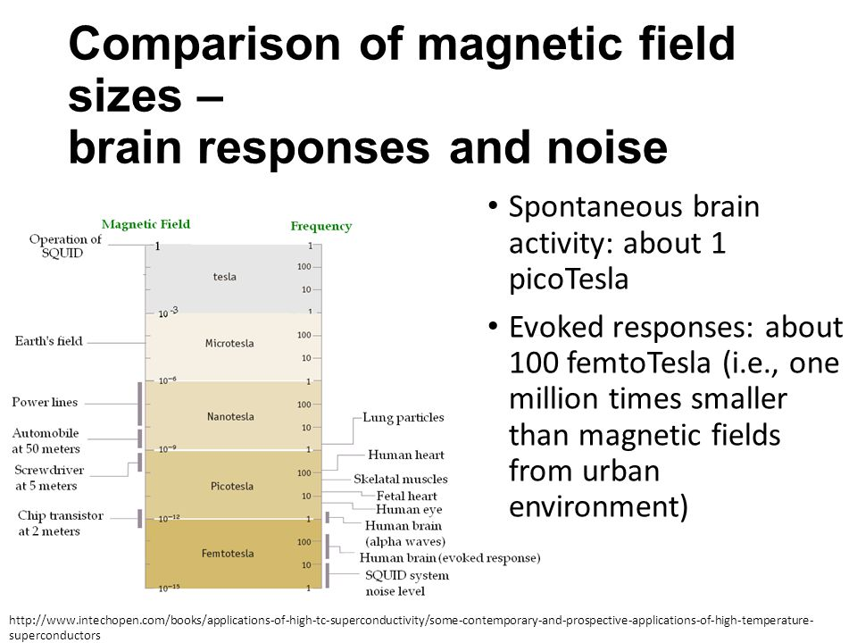 Comparison of magnetic field sizes – brain responses and noise Spontaneous brain activity: about 1 picoTesla Evoked responses: about 100 femtoTesla (i