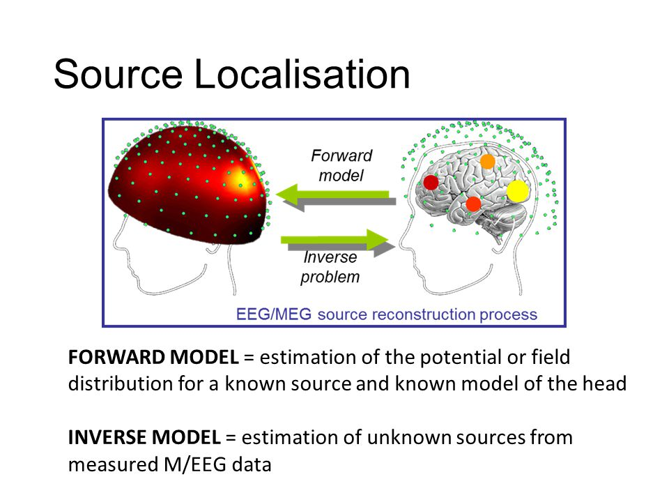 FORWARD MODEL = estimation of the potential or field distribution for a known source and known model of the head INVERSE MODEL = estimation of unknown