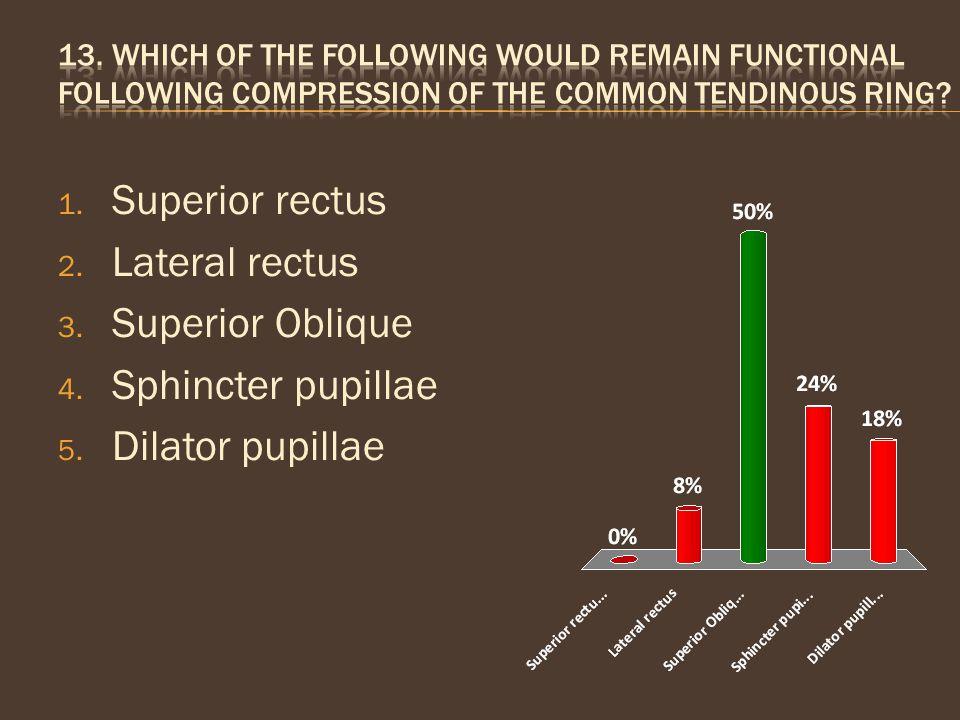 1. Superior rectus 2. Lateral rectus 3. Superior Oblique 4. Sphincter pupillae 5. Dilator pupillae