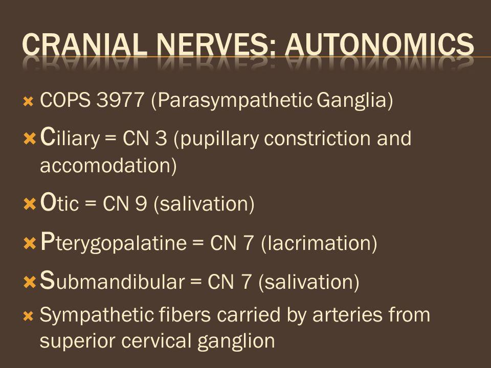  COPS 3977 (Parasympathetic Ganglia)  C iliary = CN 3 (pupillary constriction and accomodation)  O tic = CN 9 (salivation)  P terygopalatine = CN