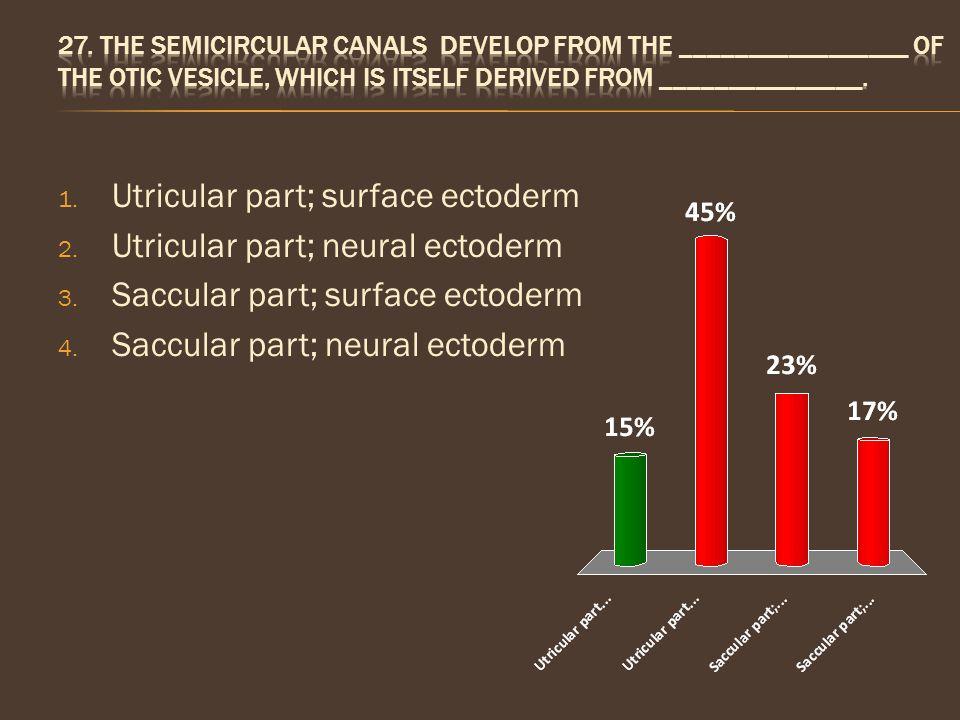 1. Utricular part; surface ectoderm 2. Utricular part; neural ectoderm 3. Saccular part; surface ectoderm 4. Saccular part; neural ectoderm