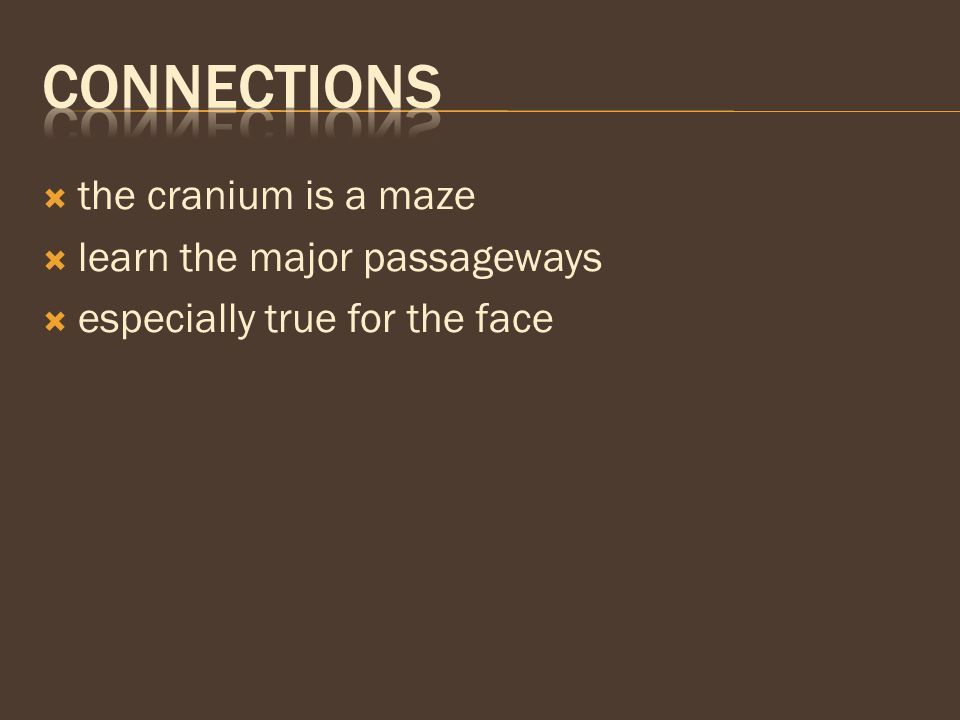  the cranium is a maze  learn the major passageways  especially true for the face