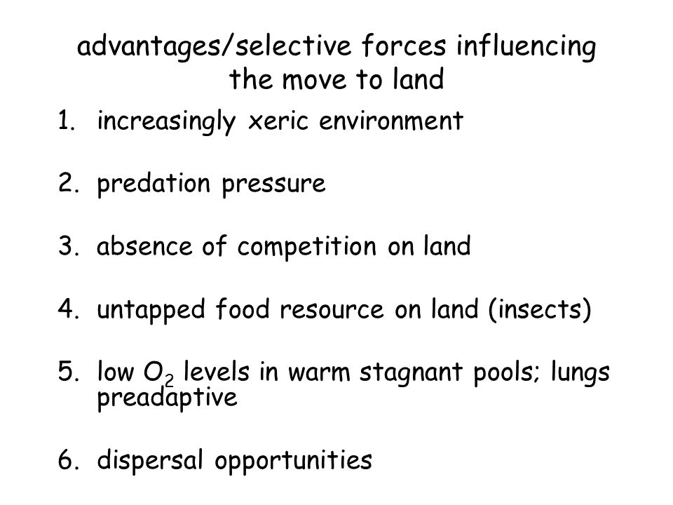 advantages/selective forces influencing the move to land 1.increasingly xeric environment 2.predation pressure 3.absence of competition on land 4.untapped food resource on land (insects) 5.low O 2 levels in warm stagnant pools; lungs preadaptive 6.dispersal opportunities