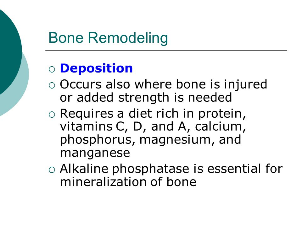 Bone Remodeling  Deposition  Occurs also where bone is injured or added strength is needed  Requires a diet rich in protein, vitamins C, D, and A,
